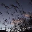 深秋の日の出前