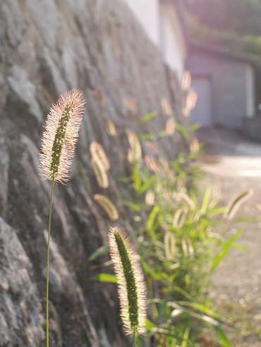 Photo063002