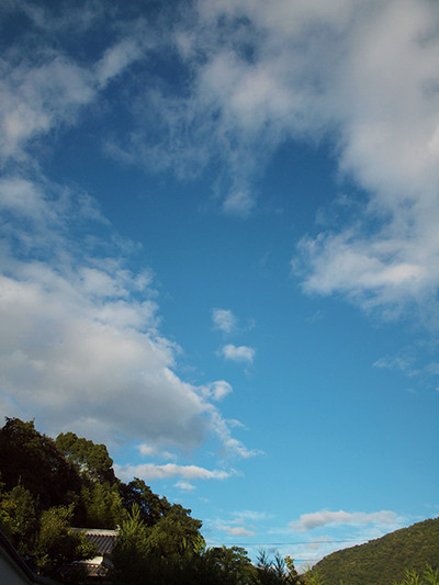 Photo081001